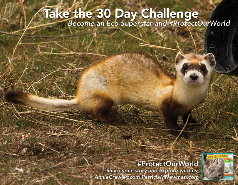 #ProtectOurWorld challenge poster